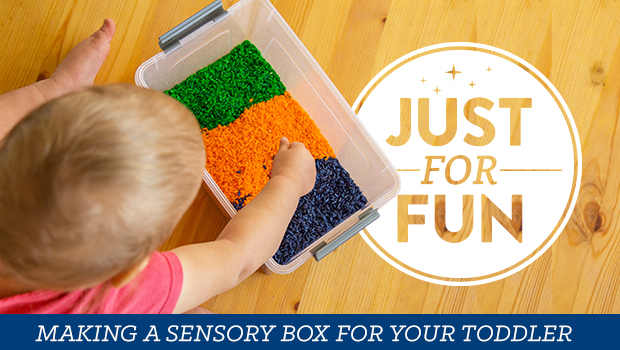 Tips for making a sensory box for your toddler.